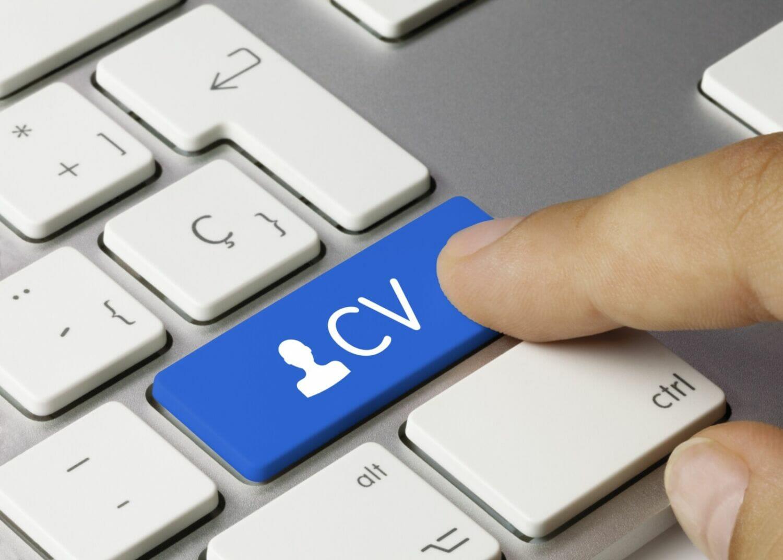 Pilot CV Examples